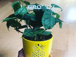 Grow Trellis 10 inch