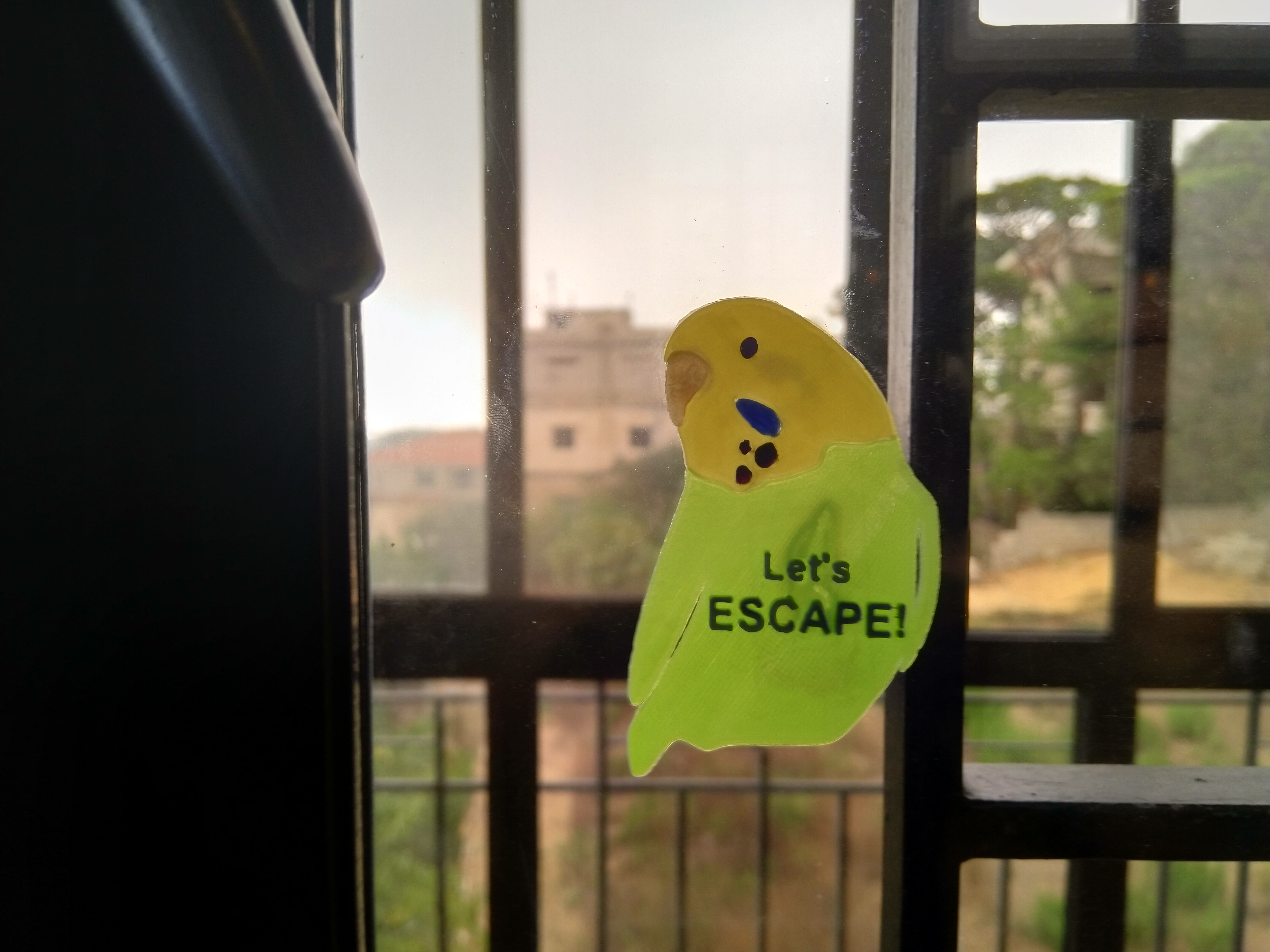 Budgie Escape Warning Sign