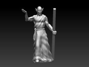 Elven Mystic