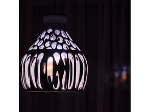 Modern Organic Lamp, lampshade for light
