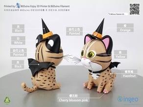 The leopard cat  / 台灣石虎