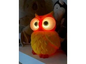 Multi Coloured Owl Lights for NeoPixel Lights
