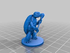 Tortle Wizard for Tabletop RPG Fantasy Games