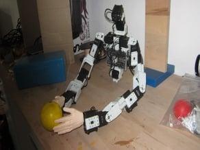 Buste robot humanoide