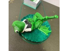 Mr J Pond: Froggy on a Lilypad