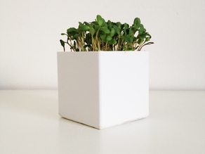 Little Square Planter