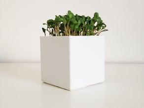 Little Square Planter