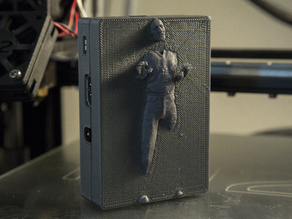 Han Solo in Carbonite - Raspberry Pi 2/B+ Case