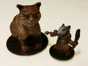 Brody the cat (Mice & Mystics)