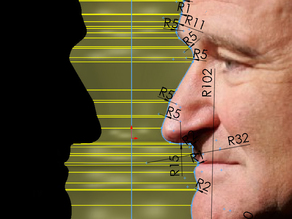 Robin Williams' Profile Bookend with Solidworks 2014 source