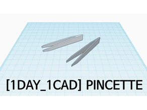 [1DAY_1CAD] PINCETTE
