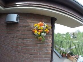Vases for wall gardening