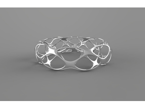 Voronoi simple ring