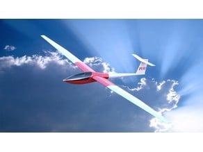 Glider DG-101