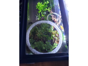 Aquarium Floating Plant Ring