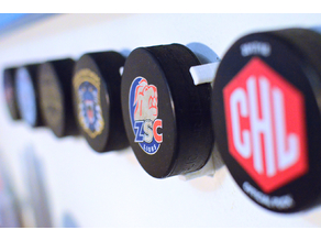 Hockey Puck Wall Mount