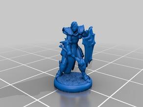 Paladin - RPG D&D Miniature