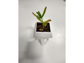 Succulent Pot - Diamond Two Piece