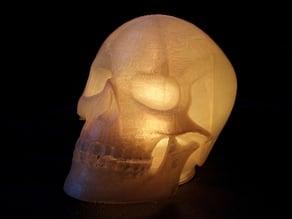 Skull LED Lamp