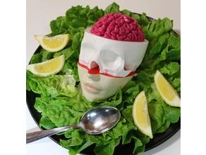 brain skull face