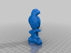 Macaw parrot - 3D Scan