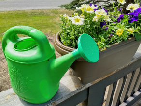 Watering Can Nozzle
