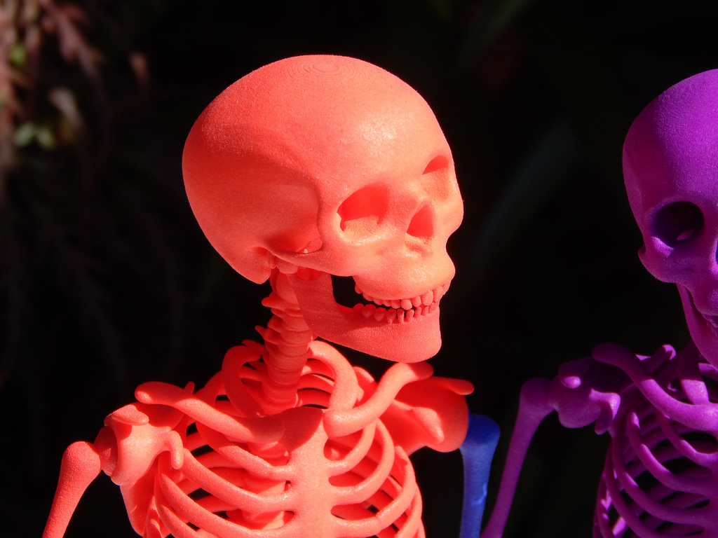Mr Bones -- Articulated Skeleton by graphix25 - Thingiverse