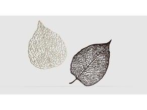 Leaf Veins System