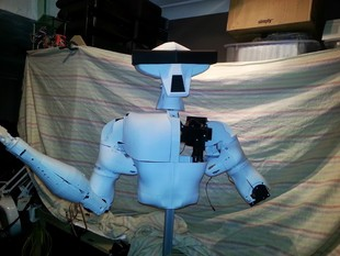 Hector, the life sized humanoid Robot