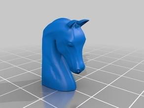 Head of Arab Horse .Cabeza de caballo arabe