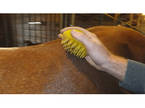 FuzNuz Horse Ergonomic Brushes