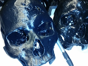 Human Skull Scan