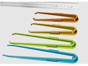 Magnetic Tweezers (Pinzette)
