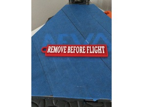 The Remove Before Flight Tag Keychain