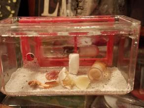 Small Test Tube Formicarium Ant Farm