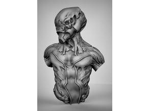 Bio morph bust