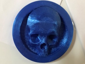 Skull Coin Fridge Magnet