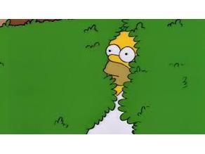 Homer disappear