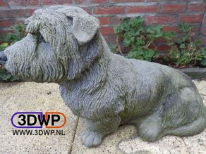 Irish Glen Of Imaal Terrier Statue 3D Scan