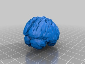 Brain with Hole