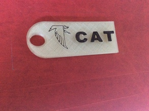 Luggage Tag for Cat with a Warhawk