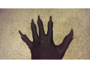 Wearable claws