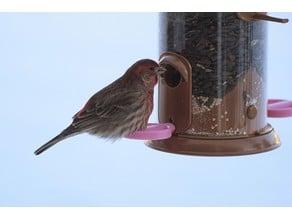 Tube Bird Feeder Perch Ring