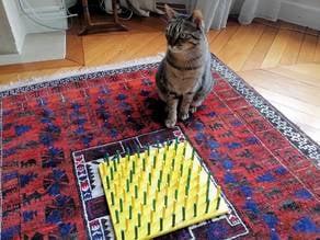 Cat food labyrinth