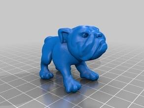 Bulldog Model