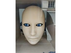 Human Head Model remixed for eyes animatronic