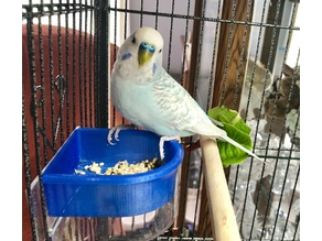 Parakeet Feeder Tray Insert