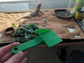 Small poop scoop for reptile habitat