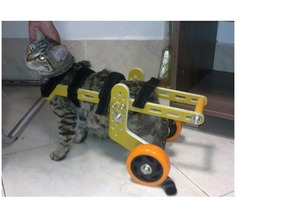 wheelchair for cat