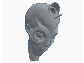 Alien Head Nesting Box (wall mount)